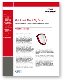 Whitepaper - Get Smart About Big Data