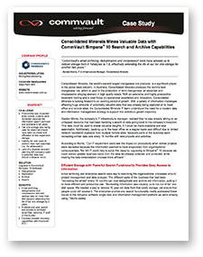 Case Study - Consolidated Minerals