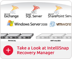 IntelliSnap Recovery Manager